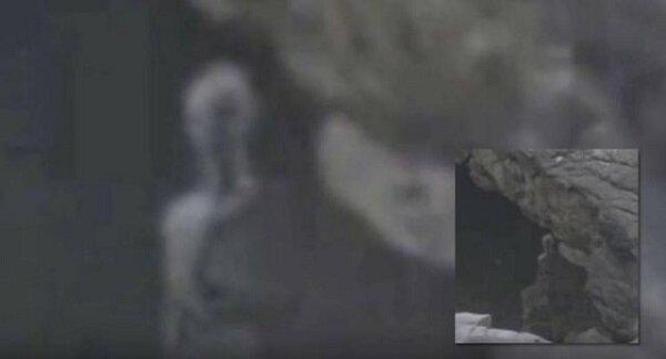 Кадр из видео ниже